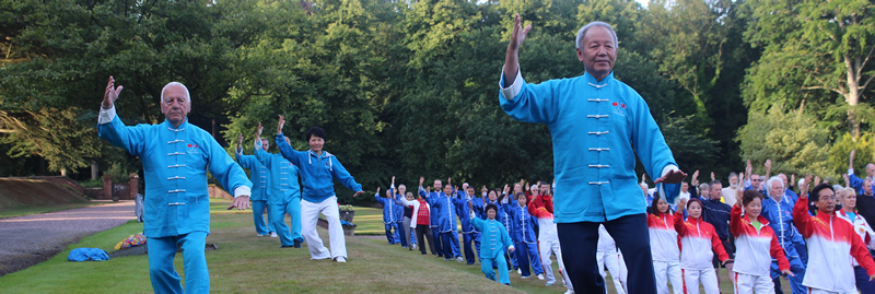 Tai Chi Interfest 2017